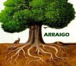 arraigo1